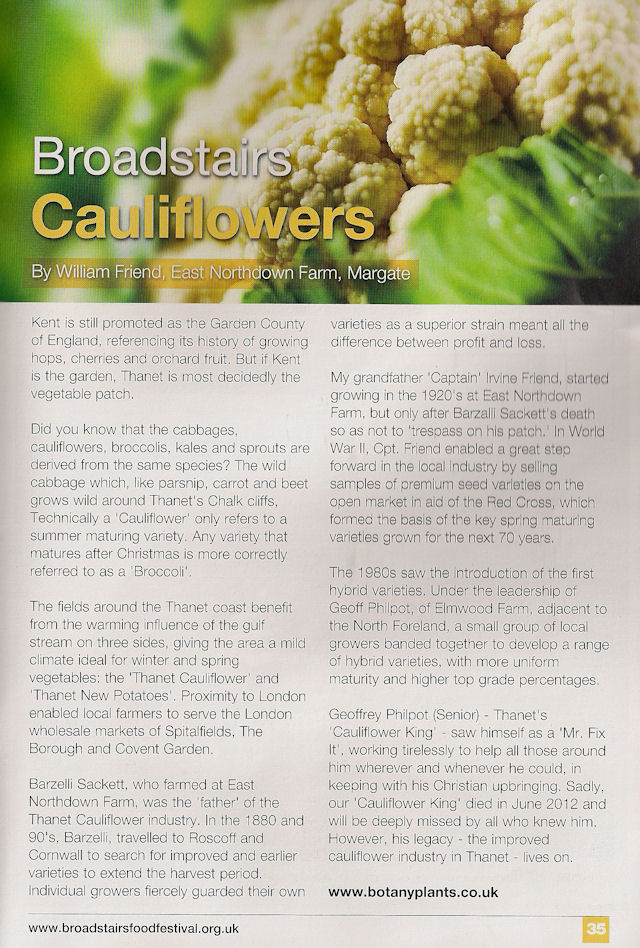 broadstairs_cauliflowers article