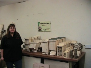 Kate Taylor Kent Nest Boxes