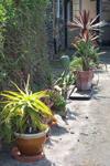 endf-garden