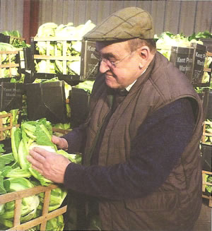 philpott-photo-examining-cauliflowers